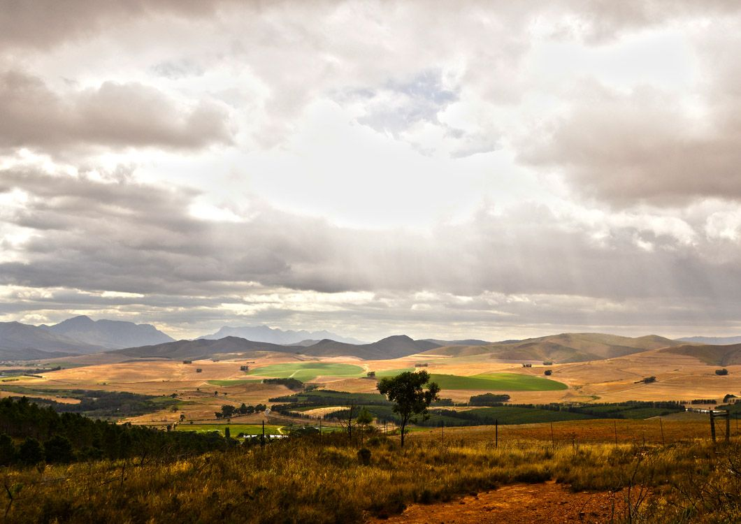 south african savannah and mountains