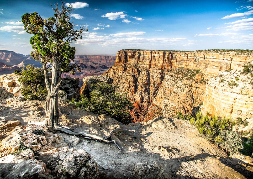 Great canyon during west forever CCT